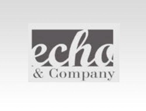 Logo Design – Echo & Company