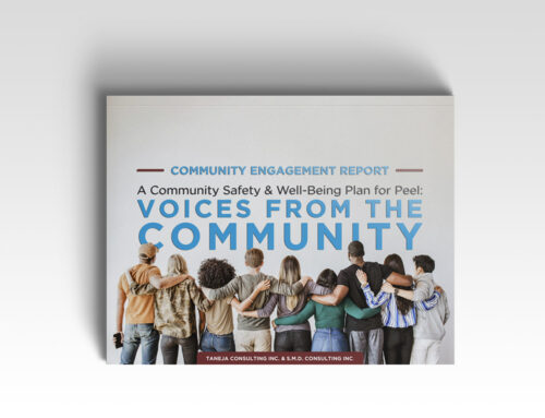 Community Report – CSWB